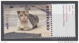 Nederland - Charlotte Dumas - Kat, 2012 - Kat/Cat/Katze - MNH - NVPH 3340 - Ungebraucht