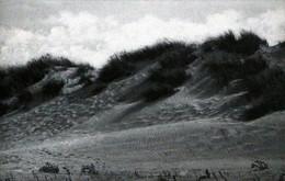 KOKSIJDE Baden Wandelpad Doorheen De Duinen COXYDE Bains Le Sentier Dans La Dune BELGIUM The Path Traced In The Dune - Koksijde