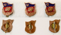 Militaria-RDA-insigne Politique_F.D.J. Badge_Freie Deutsche Jugend - Badges & Ribbons