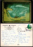Postcard - USA - New York - 1984 -  Dove Of Peace - Circulated - A1RR2 - Pájaros