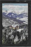 AK 0572  Semmering - Villa Waldhof Gegen Rax / Verlag Ledermann Um 1917 - Semmering