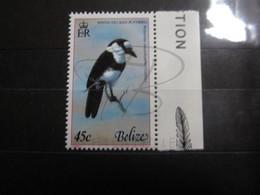 VEND BEAU TIMBRE DE BELIZE N° 484 + BDF , XX !!! - Belize (1973-...)