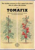 Leverkusen (Allemagne) Laboratoire BAYER: Prospectus  TOMAFIX Préparation Pour Les Tomates   (M0827) - Pubblicitari