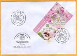 2020 Moldova Moldavie UNO: 2020 - International Year Of Plant Health, Private FDC  Insectes , Flowers , Bees - Moldova