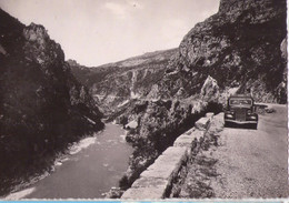 7959 Bis - JD - Castellane ( 04 ) - La Route Castellane-Rougon - A. Tardy Phot. édit. - Cp Semi-moderne - - Castellane