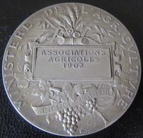 France - Médaille Ministère De L'Agriculture - Argent - Associations Agricoles 1905 - Alphée Dubois - 41 Mm, 35,8 G - Professionali / Di Società