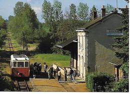 VARENNES SUR FOUZON - ANCIENNE LIGNE VOIE METRIQUE DU BLANC A ARGENT TRAIN SPECIAL SABA 1995 - Eisenbahnen