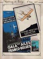 Dossier Sur MEETING DE LIEGE  Du 6 MAI 1934 (AERODROME D'ANS) - C.P. Neuve - Vignette - Programme Officiel - Demonstraties