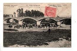 81 - LABRUGUIÈRE . LES CHEVAUX À L'ABREUVOIR - Réf. N°10478 - - Labruguière