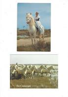 CHEVAUX LOT DE 2 CARTES  CAMARGUE   **** A  SAISIR *** - Horses