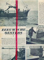 Orig. Knipsel Coupure Tijdschrift Magazine - Zeeland - Yerseke - Zeeuwse Oesters - 1939 - Unclassified