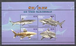 PK061 ANTIGUA & BARBUDA FISH & MARINE LIFE SHARKS OF THE CARIBBEAN 1KB MNH - Vita Acquatica