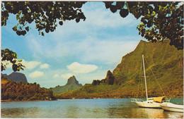 POLYNESIE FRANCAISE IMAGES DU PACIFIQUE  MOOREA BAIE DE COOK - Polynésie Française