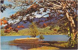 POLYNESIE FRANCAISE SCENERY AT TARAVAO PAYSAGE DE TARAVAO TAHITI - Polynésie Française