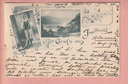 OLD POSTCARD - SWITZERLAND - SUISSE -  SCHWEIZ -   ISELTWALD  1901 - BE Berne
