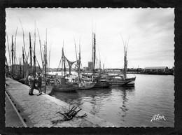 85 Sables D'olonne Les Thoniers Dans Le Port édit.flor N° 2482 Bateaux De Pêche CPSM Grd Format Année 1950 - Sables D'Olonne