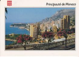 CPSM MONTE CARLO VUE GENERALE - Monte-Carlo