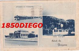 SALUTI DA FREGENE - MULTIVEDUTE F/PICCOLO VIAGGIATA - Otros