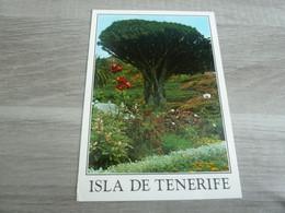 TENERIFE - ISLA - ICOD - EDITIONS GASTEIZ - - Tenerife