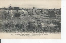 VILMORIN ANDRIEUX   Etablissement De Verrieres - Sonstige Gemeinden