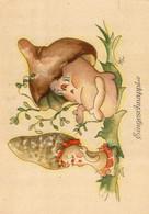 CP Champignon,pilz, Mushroom,illustrateur AP? - Champignons