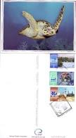 2001 QATAR Postcard Complete Set 3 Cards Environment Clean - Qatar