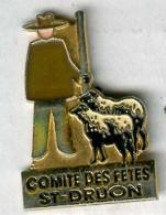Pin's Mouton Sheep Comité Des Fêtes Saint Druon - Dieren
