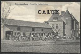 Luxembourg / Luxemburg Senningerberg Propriété Schaumbourg - Altri