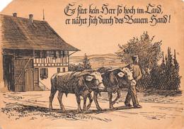 Mitgliebskarte Des Schweizerischen Bauernverbandes Für Das Jahr 1946 Schweiz ( 10 X 15 Cm) - Other