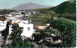 ISLAS CANARIAS ICOD  VUE PARTIELLE - Tenerife