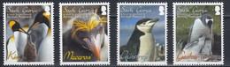 South Georgia & South Sandwich Islands 2010 Penguins 4v ** Mnh (50357A) - Südgeorgien
