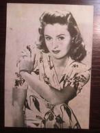Barbara Stanwyck - American Actress - Beroemde Vrouwen