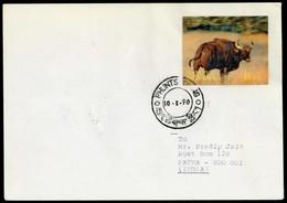 1970, Bhutan, 381 U.a., Brief - Bhoutan