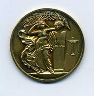 Médaille En Vermeil: Industries Chimiques: VIC: Attibué - Argent Sur La Tranche - Professionals / Firms