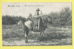* Knokke - Knocke (Kust - Littoral) * (Legia) Un Pecheur De Crevettes, Garnalen Visser, Cheval, Horse, TOP - Knokke