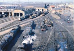 Loire-Atlantique - Nantes - Le Dépôt Des Locomotives à Vapeur De Nantes - Blottereau Le 24 Juin 1967 - Nantes