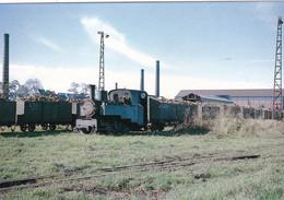 Eure-et-Loir - Toury - Locomotive 030T Decauville De La Sucrerie Manoeuvrant Une Rame De Tombereaux De Betteraves - Other Municipalities