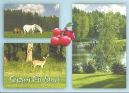 (FINLAND) MULTIVIEW - Used Postcard - Finlande