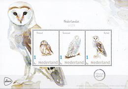 Nederland - Beleef De Natuur - Velletje - Steenuil/sneeuwuil/kerkuil - Uil/owl/Eule/chouette - MNH - Private Stamps