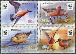 Korea 2015. Red Knot (Calidris Canutus) (MNH OG) Block Of 4 Stamps - Corea Del Norte