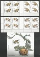 4x SOMALIA - MNH - Animals - Reptiles - Armadillos - Otros