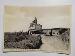 2- SIENA CONVENTO S. BERNARDINO - Siena