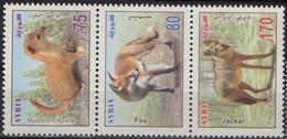 Syria 2014. Fauna. Animals. Fox Jackal.  MNH - Syria