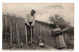 CHAMPAGNE TRAVAIL DE LA VIGNE LE FICHAGE ANIMEE - Champagne-Ardenne