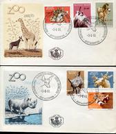 59320 Lbelgium,  2 Fdc  1961  Differents Animals, Panda, Alces, Giraffe,  Zoo Anvers - 1961-70