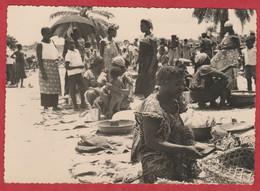 CPA - CONGO - 1950 - Photo Réel - Gevaert - 6 - Belgian Congo - Other