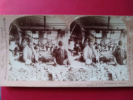 PHOTO STÉRÉO  Conserverie Industrie Du Saumon à Astoria , Oregon - BE - Stereoscoop