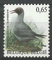 Belgium 2004 Mi 3320w MNH ( LZE3 BLG3320w ) - Seagulls