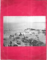 SAINT BREVIN L'OCEAN - 44 - Coucher De Soleil à Marée Basse - 101020 - - Saint-Brevin-l'Océan