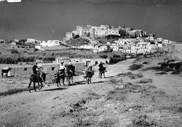 Naxos, Esel - Greece